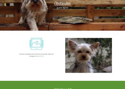 Sitio web Hotel de Mascotas Pet Inn