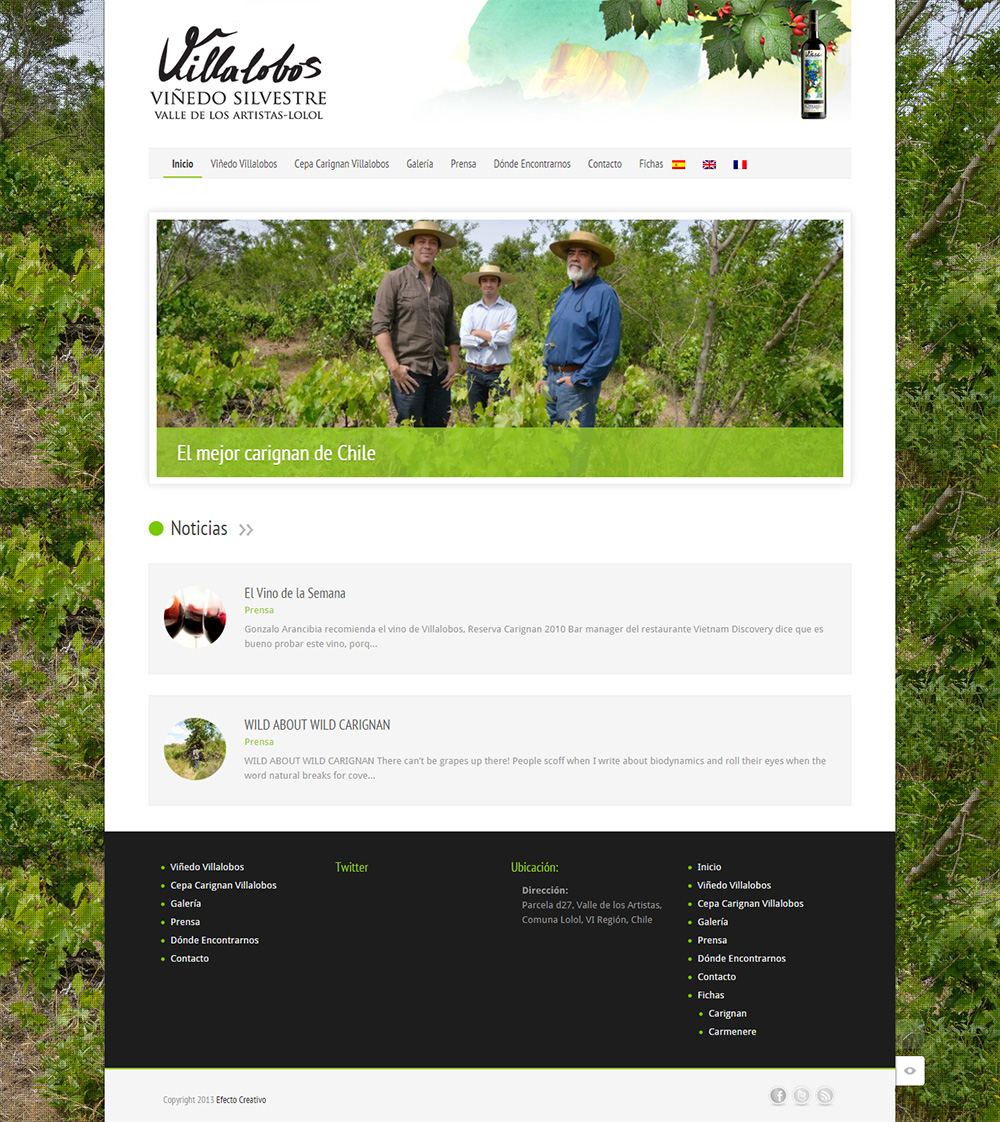 Sitio web Villalobos wine (para agencia Efecto Creativo)